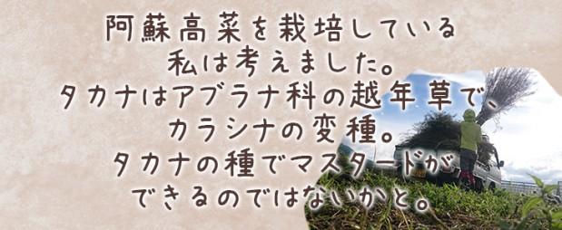 takanard_contents_05-2