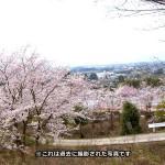 jyoudojimaki