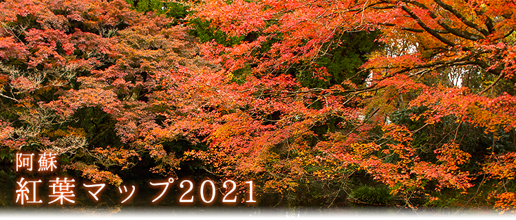 title_autumn_leaves2021